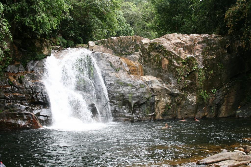 LIBER dažďový prales IMG_4950