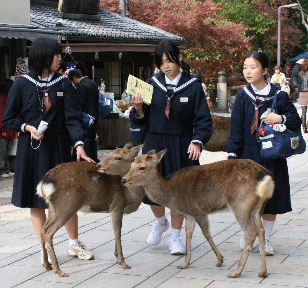 Nara - študentky