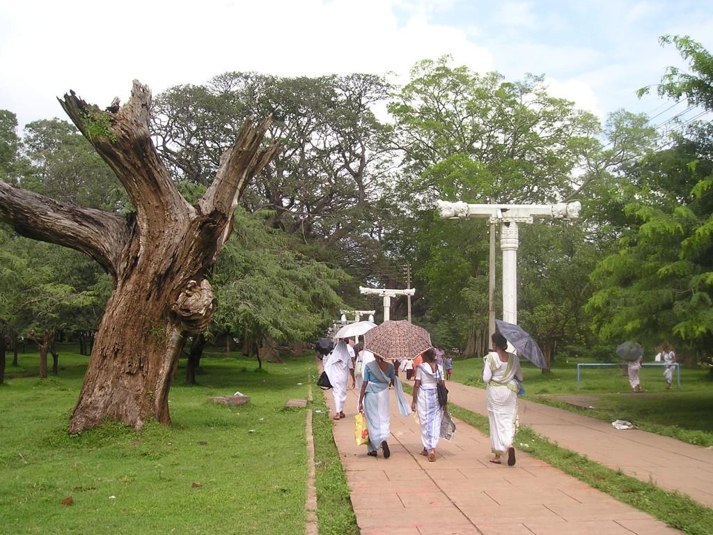 Srí Lanka - Anuradhapura ženy v sárí