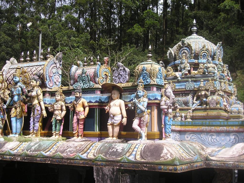 Srí Lanka - cesta budhistický chrám (352)