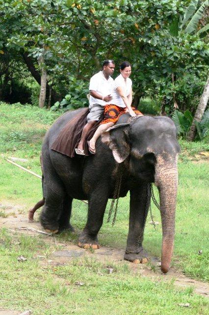 Sri Lanka - vozenie sa na slonoch