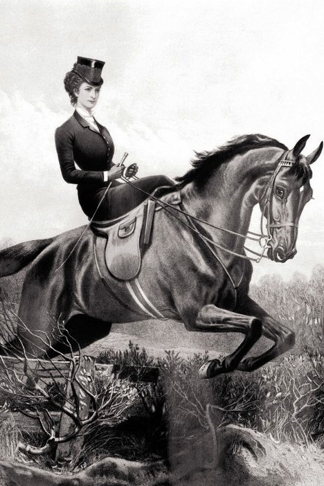 Wikipedia Elisabeth_of_Austria_horse