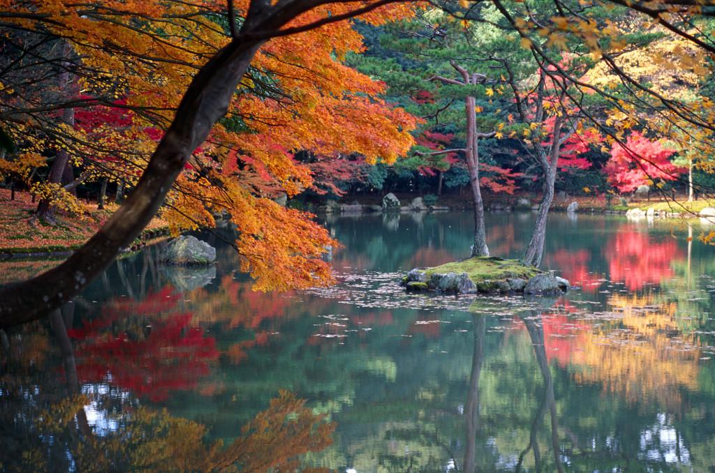 Wikipedia - Kyoto jesenné